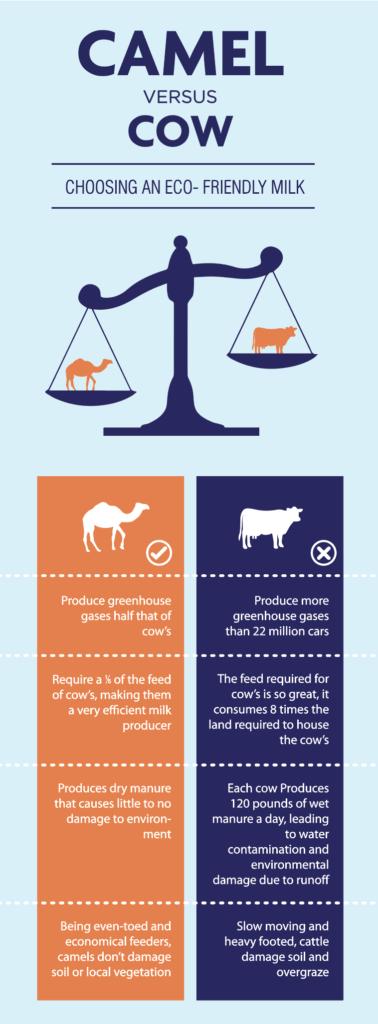 Sahara Dairy Co Camel Milk Benefits Nutrition